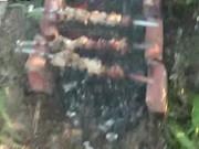 หนังโป้ฝรั่งHardcore Public Sexพาแฟนมาซั่มใต้ต้นไม้จัดเต็มไม่อายชางบ้าน โม้กซะน้ำเงี่ยนแทบคาปากสุดยอดเลย